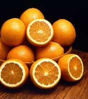 Фото Цитруса китайского, или апельсина сладкого