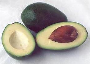 фото плодов авокадо